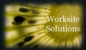 Worksite Solutions Kiwi
