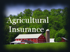 Agricultural Insurance Pretty Barn